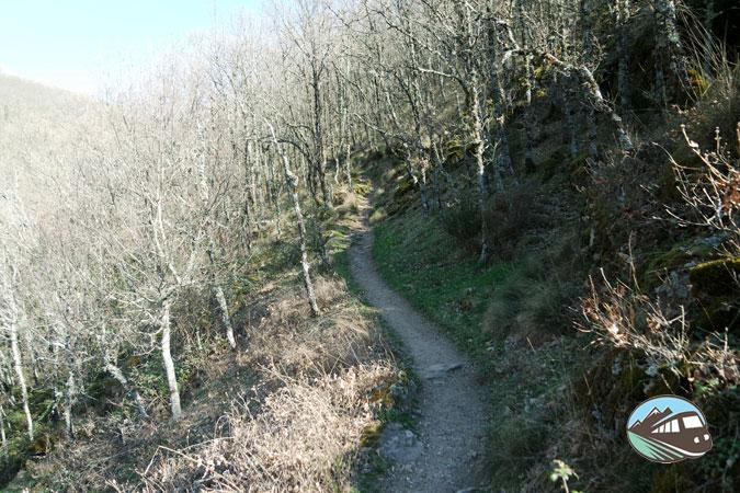 Camino - Hervás