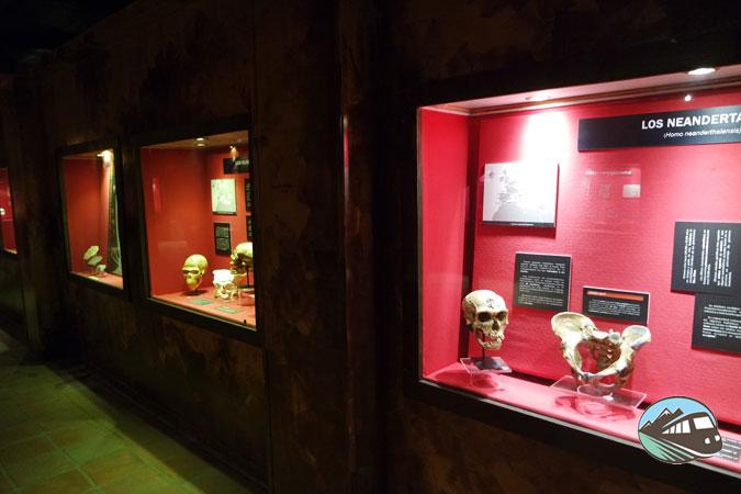 Museo de Molina de Aragón
