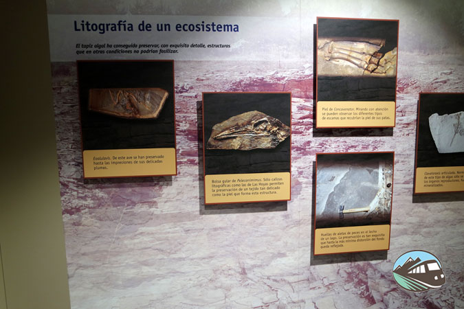 Centro Expositivo de Cañada del Hoyo