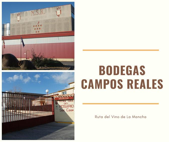 Bodegas Campos Reales – Portada