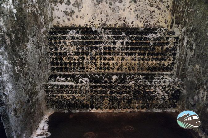 Cementerio de botellas CVNE