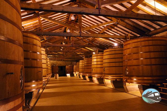 Sala de fermentación CVNE