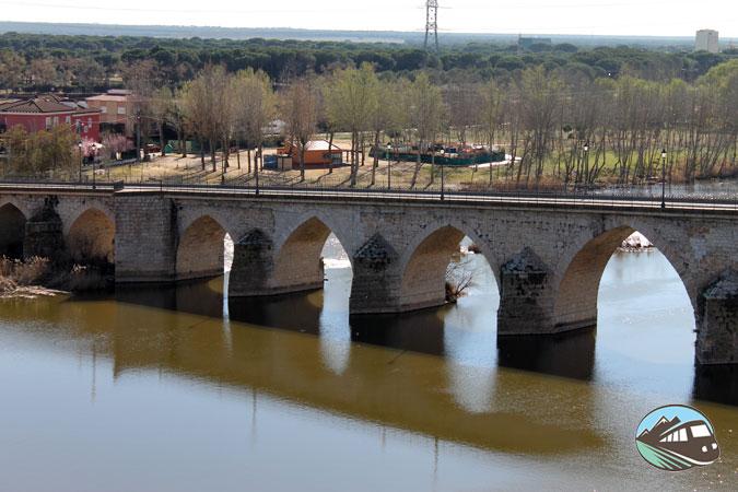 Puente medieval - Tordesillas
