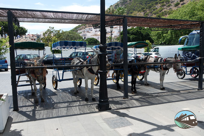 Burros-taxis