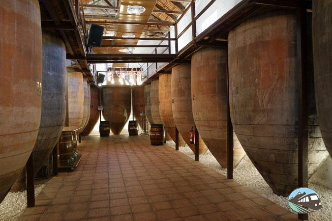 Bodegas Navarro López- Ruta del Vino de Valdep