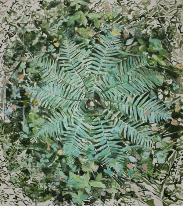 green fern circle from above, forest bed impressionist painting