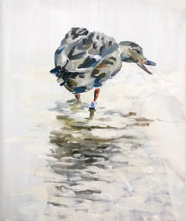 laughing duck standing in water, realistic animal painting