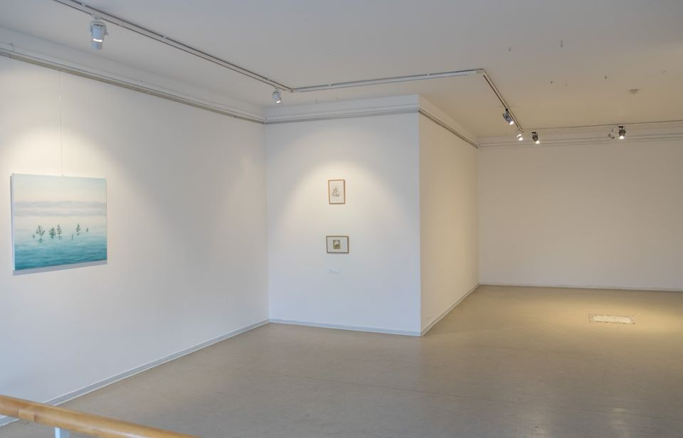 painting exhibition in gallery, minimalisic exposition