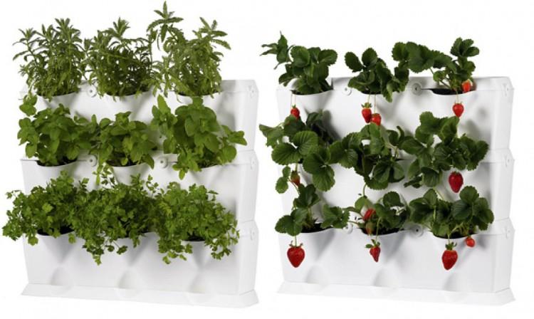 Jardín-vertical-soporte-de-plástico1