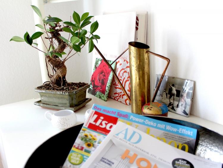 Detalles-bonsai-revistas