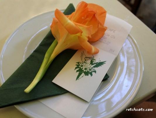 Negocios-bonitos-floristerías-presentación-cuenta