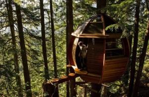 casas de diseño en los árbole