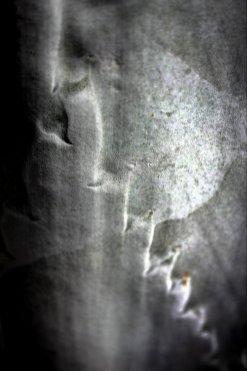 2011usa_5-093