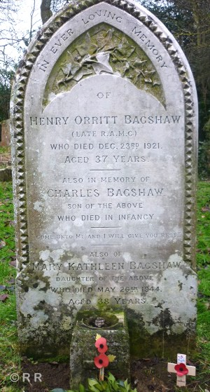 Image result for greetham and the great war henry bagshaw