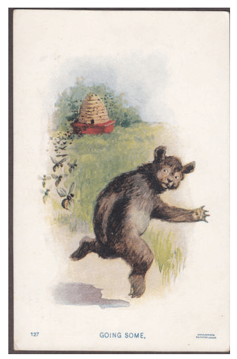 Other Bears and Bees  Sergio Ruzzier