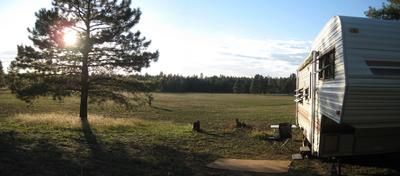 Kelly Canyon Forest Meadow near Flagstaff Arizona