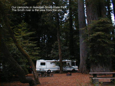Campsite,boondocking,jedediah,redwoods,state park