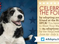 RVA pet adoptions for just $4 through July 3