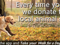 Take your Dog for a Walk and Give Back