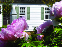 50% Off Tickets to Virginia's Historic Garden Week