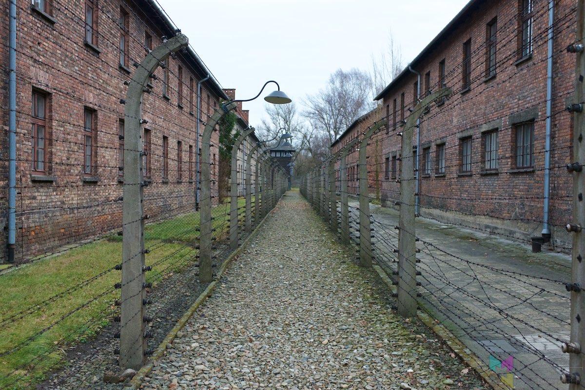 Auschwitz-Birkenau-RCH_1408