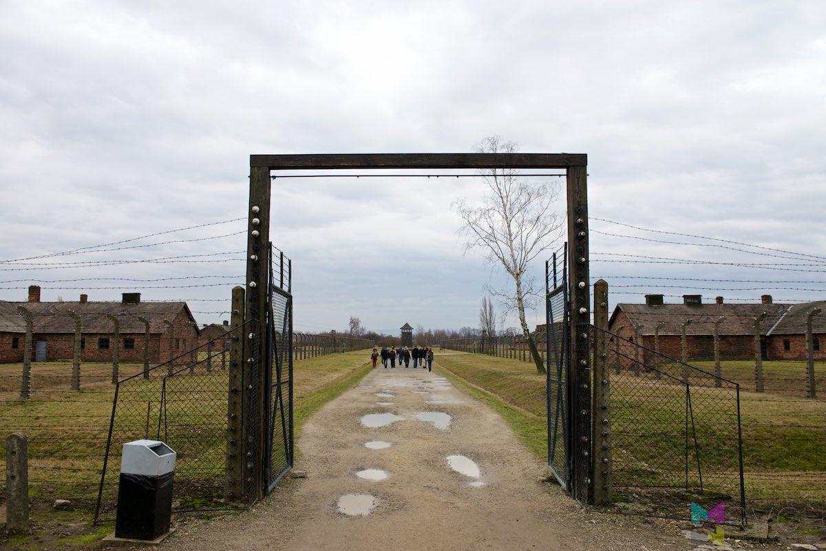 Auschwitz-Birkenau-RCH_1431