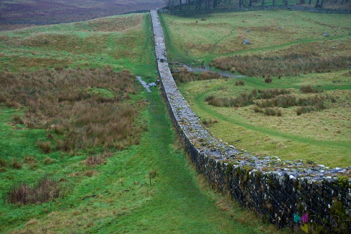 Scottish-Border-Region-RCH_1338