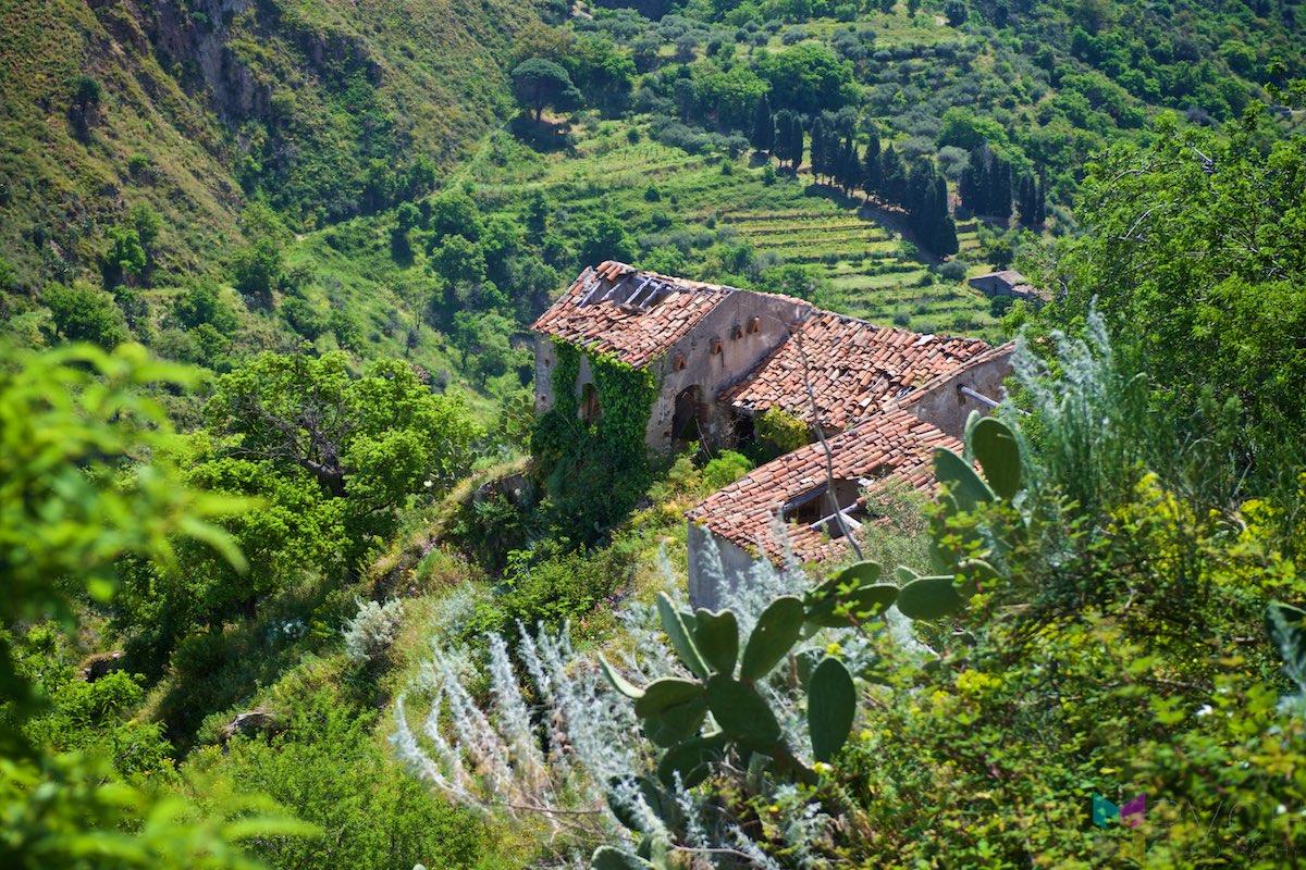 Sicily-Savoca-RCH_2594