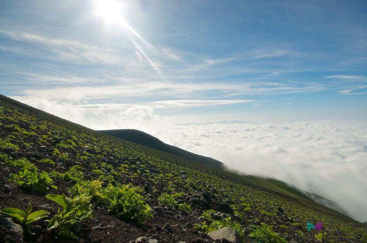 Mount-Fuji-_PKO6851