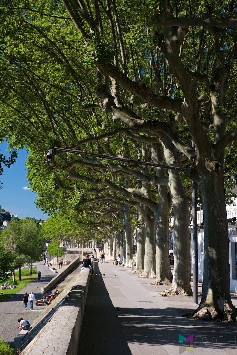 Lyon-RCH_3968