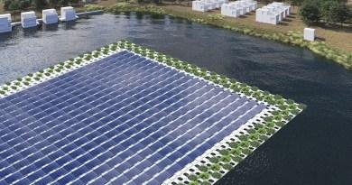 Groene drijvende zonneparken versterken natuur