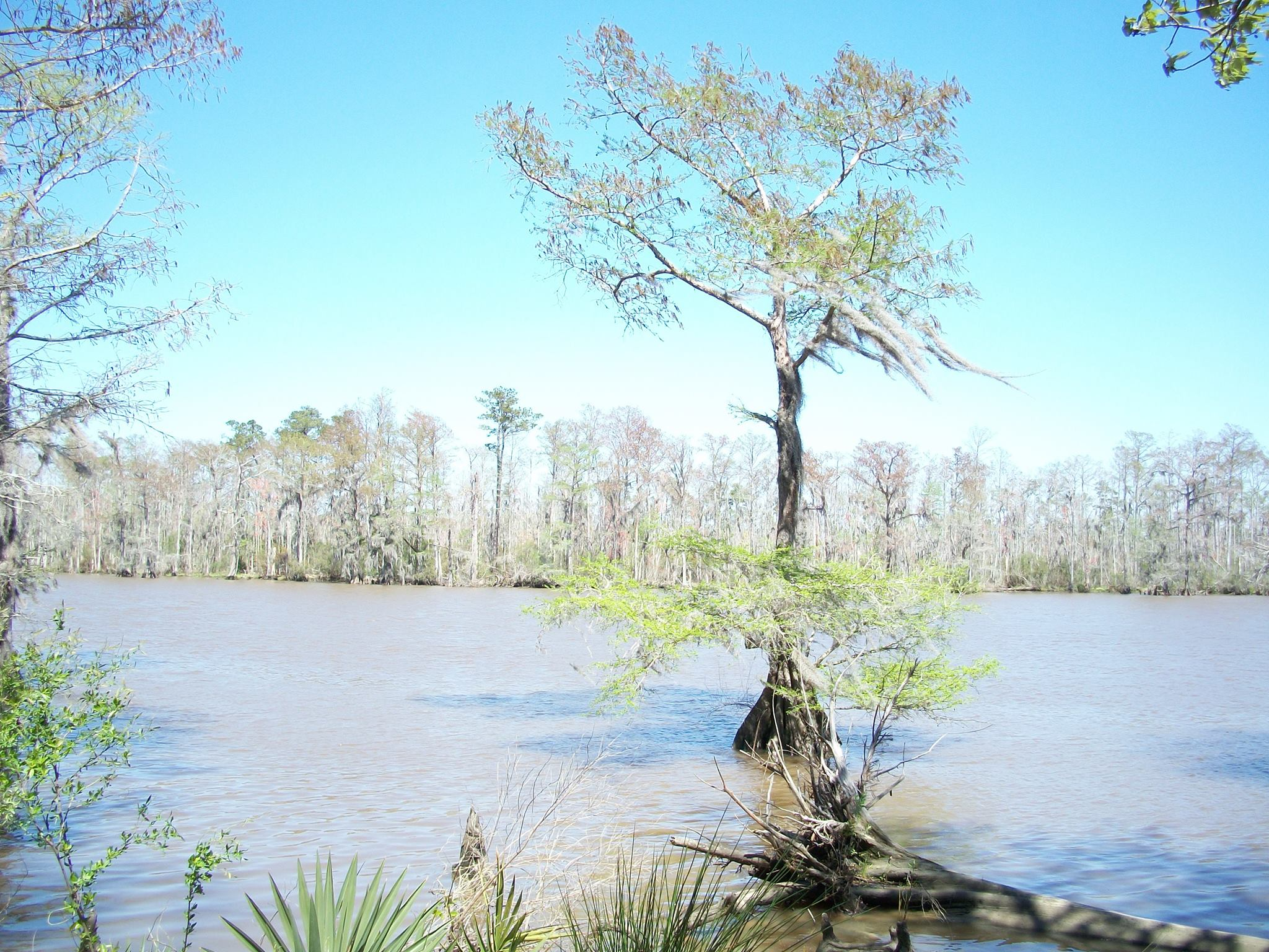 Travel Tuesday Featured Destination – Fairview-Riverside State Park