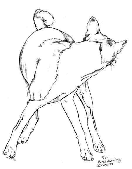 Canine Thyroid update 2011