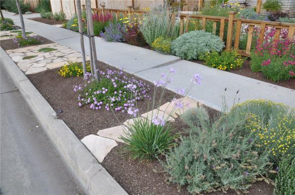 park strip planting