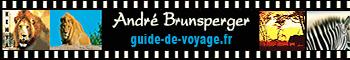 carte visite André mentions légales