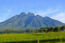 Volcan domaine des Gorilles - Circuit safari 12 jours Rwanda Ouganda