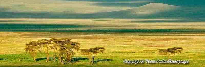 Cratère du N'Gorongoro Tanzanie - Nos safaris en Tanzanie