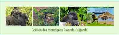 images divers climat rwanda ouganda