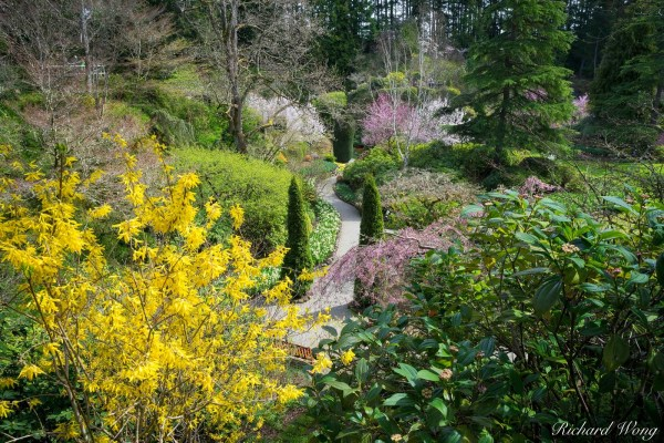 Sunken Garden Vancouver Island Bc Richard Wong