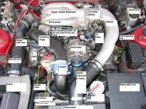 Anyone have a pic of the engine bay showing what is what