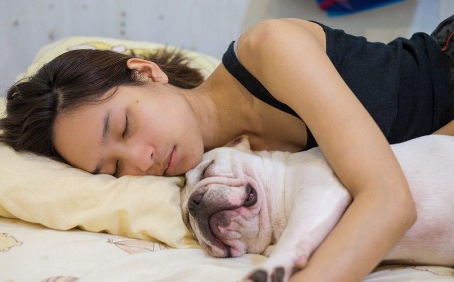 sleep, sedative, CBN, THC, CBD, cannabinoids, endocannabinoid system, appetite, hunger stimulant, relax