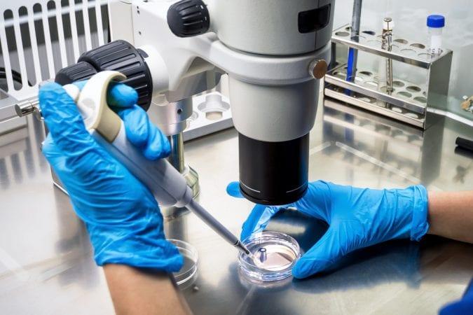 Researchers looking at petri dish