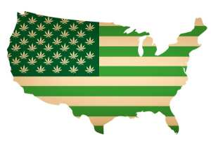 United States Map covered in cannabis leaf symbols