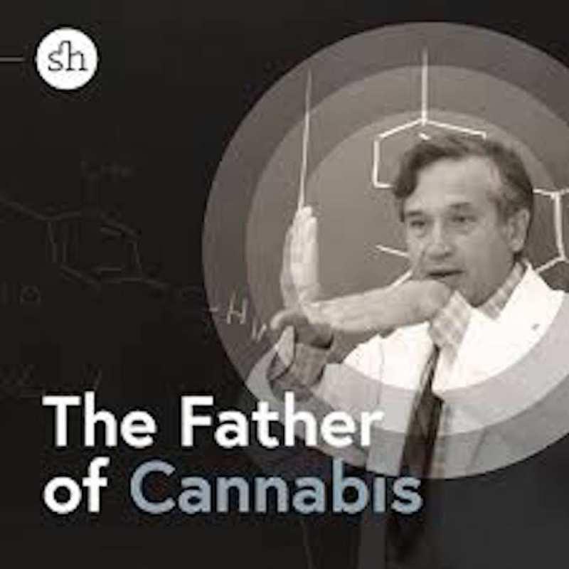 machoulem, father of cannabis, cannabis, research, cannabinoids, THC, CBD, scientist, conspiracy, fat, sugar