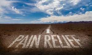 cannabis, cannabinoids, endocannabinoid system, CBD, THC, research, legalization, pain, pain relief, opioids