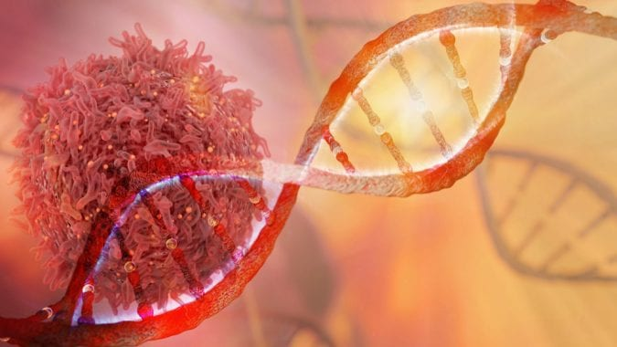 cannabis, cancer, THC, CBD, cannabinoids, oncology, endocannabinoid system, cannabinoid receptors, immunotherapy, DNA