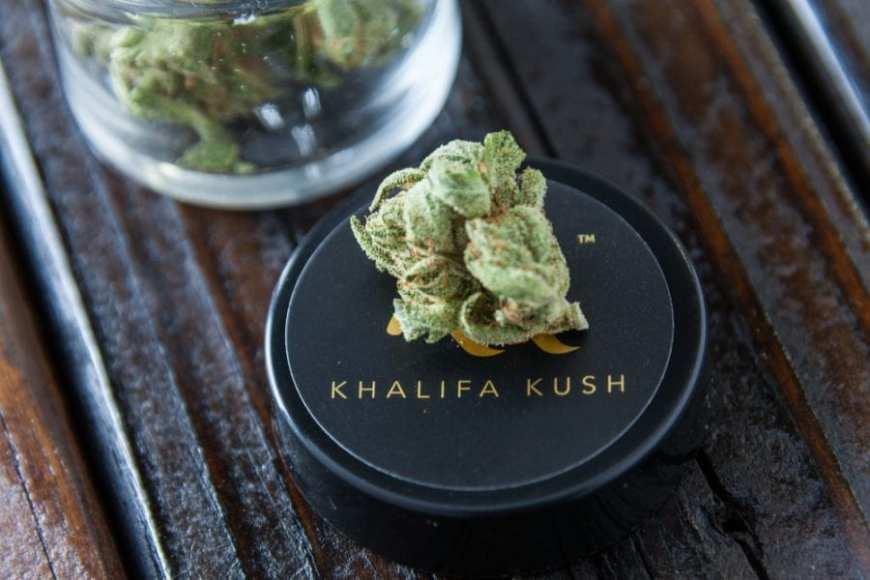 cannabis, Wiz Khalifa, Khalifa Kush, USA, Canada, legalization, celebrity brands, paraphernalia, buds