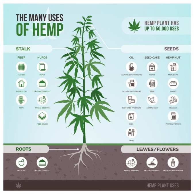 Uses for Hemp