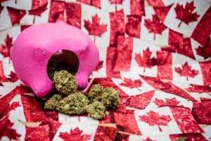 cannabis, price, legal cannabis, Canada, expensive, black market, dispensaries, cost of cannabis, survey, StatsCan, StatsCannabis, legalization