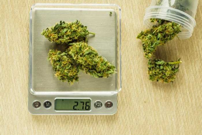 weed scale 27g at police raid